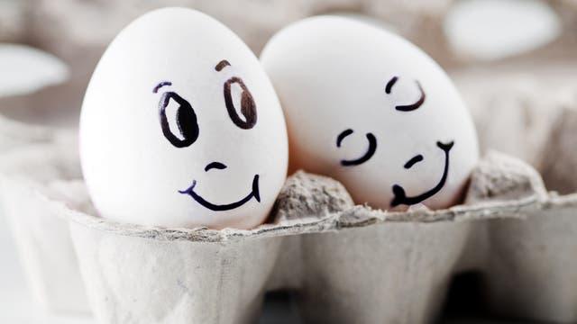 Ein glückliches Paar Eier im Karton