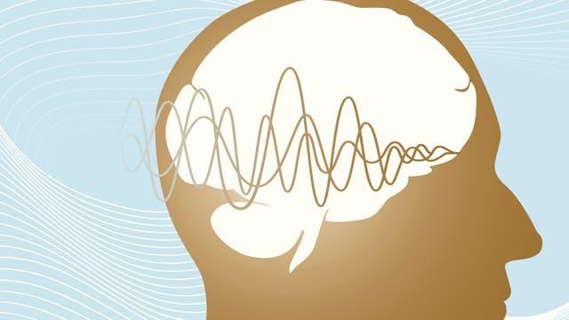 Wissenschaftler wollen neurologische Erkrankungen mit Ultraschall  behandeln– doch zunächst müssen sie erforschen, wie die  dabei verwendeten Wellen auf Nervenzellen wirken.