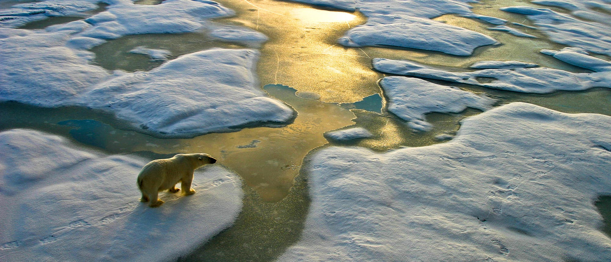 Der Planet erwärmt sich nicht nur rasch, das Tempo hat auch deutlich zugenommen.