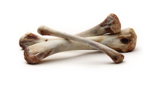 Und vom ganzen Hühnerschmaus gucken nur noch Knochen raus