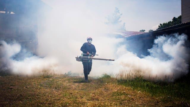 Moskitos, die Krankheiten wie Malaria oder Denguefieber auslösen, sollen durch Insektizide abgetötet werden.