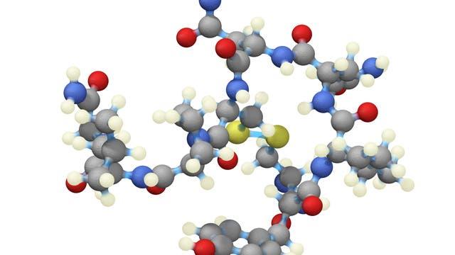 Oxytocin-Molekül