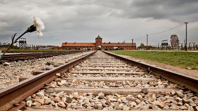 Bahngleise ins ehemalige Konzentrationslager Auschwitz-Birkenau (2014)