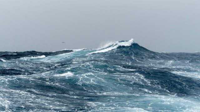 Eine große, sich nicht brechende Welle auf dem Meer.