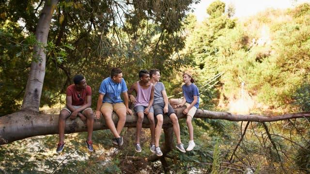 Junge Männer sitzen auf demselben Ast
