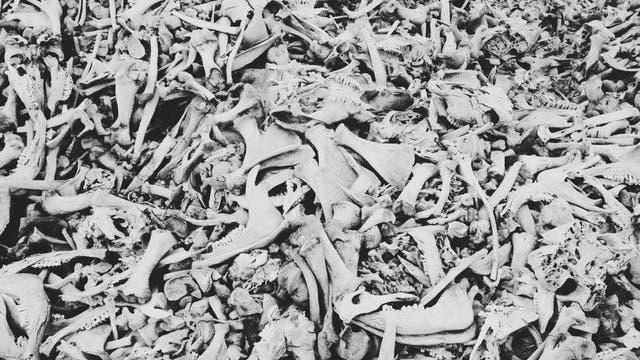 Knochenhaufen