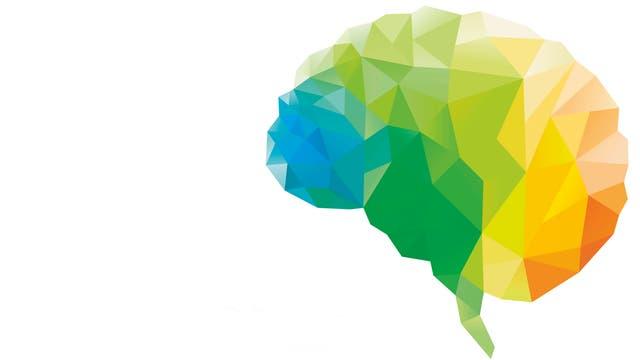Ein Gehirn ist bunt eingefärbt.