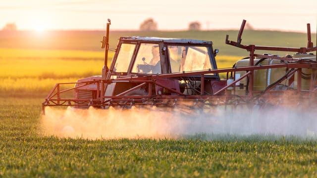 Ein Trecker versprüht eine Flüssigkeit über Jungpflanzen auf einem Feld.