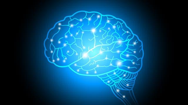 Netzwerk im menschlichen Hirn (Abstrakte Darstellung)