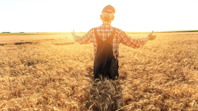 Entschleunigter Landwirt