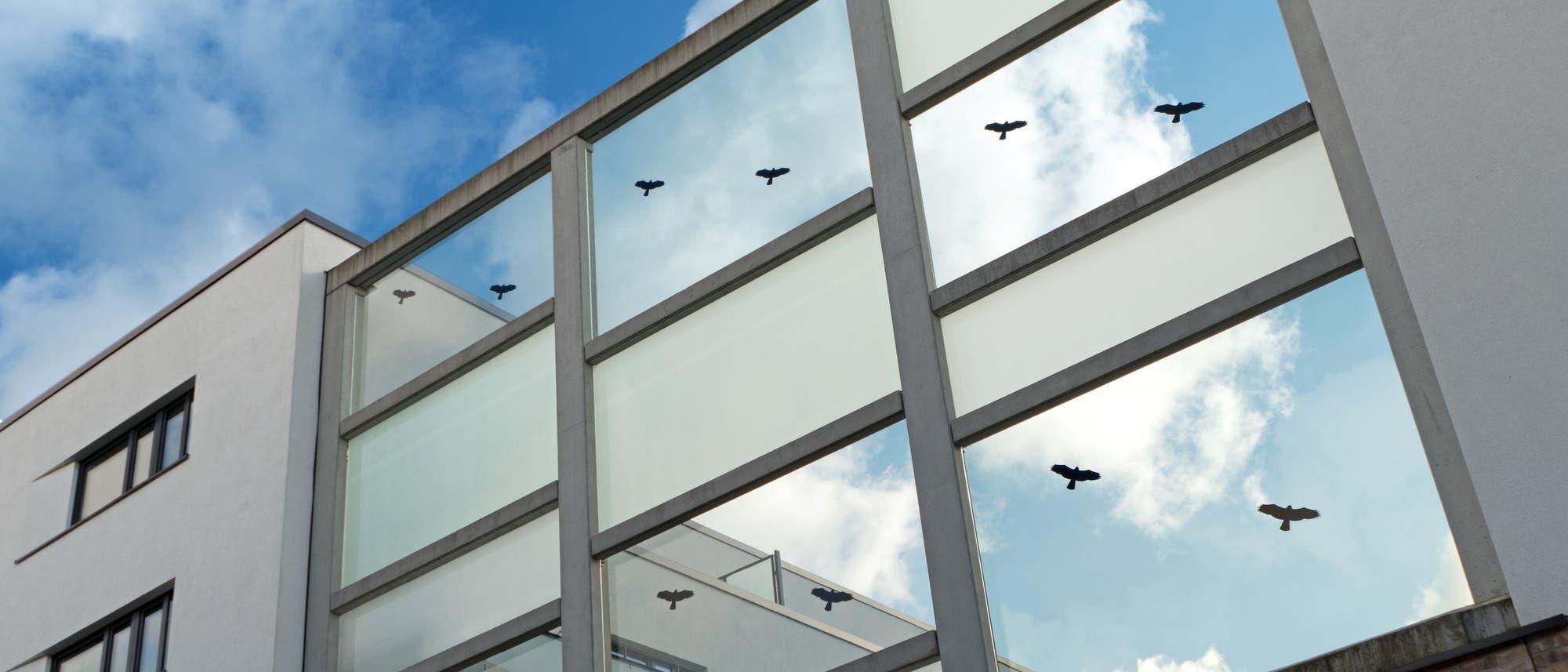 Fenster mit Vogelsilhouetten