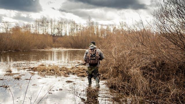 Naturschützer plädieren seit Jahren dafür, die Jagd mit Bleimunition in Feuchtgebieten zu verbieten.