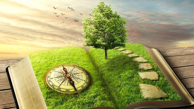 Ein aufgeschlagenes Buch mit Windrose, Gras und Baum vor weitem Horizont.