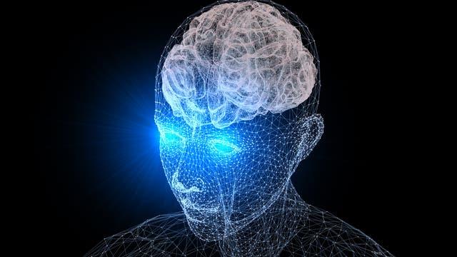 Der Sehsinn und das Gehirn sind eng miteinander verbunden.