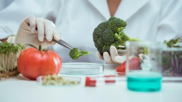 Brokkoli und weitere Gemüse werden im Labor untersucht
