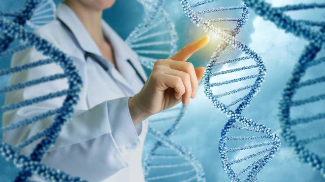 Obwohl wir so komplex sind, haben Menschen unerwartet wenig Gene
