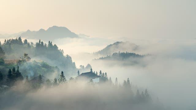 Morgennebel über Hügeln