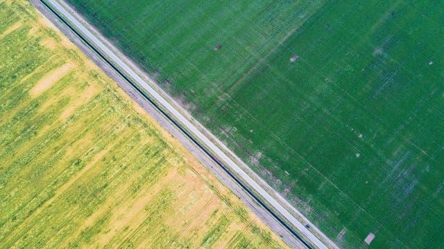 Agrarwüste in Mitteleuropa