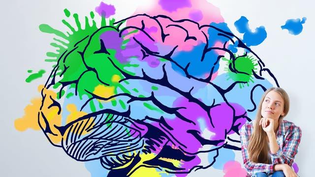 Männer und  Frauen haben grundlegend verschiedene  Gehirne? Falsch. Das Gehirn gleicht eher  einem bunten Mosaik aus männlichen und  weiblichen Merkmalen.
