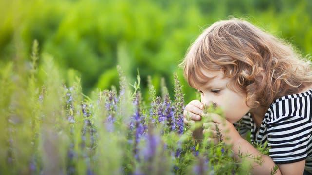Mädchen schnuppert an Pflanzen