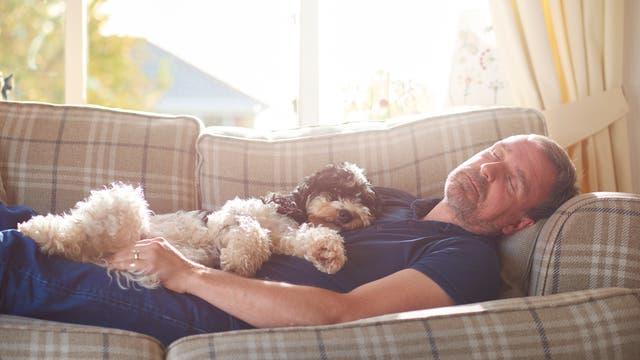 Ein Mann mittleren Alters hält mit seinem Hund Nickerchen auf dem Sofa