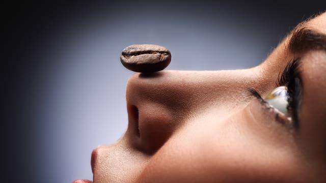 Eine Frau balanciert eine Kaffeebohne auf der Nase. Warum sie das tut, bleibt ihr Geheimnis, aber es sieht sehr anmutig aus.