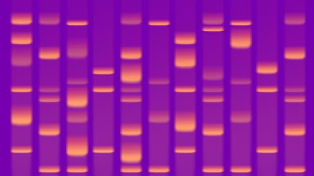 DNA-Forensik