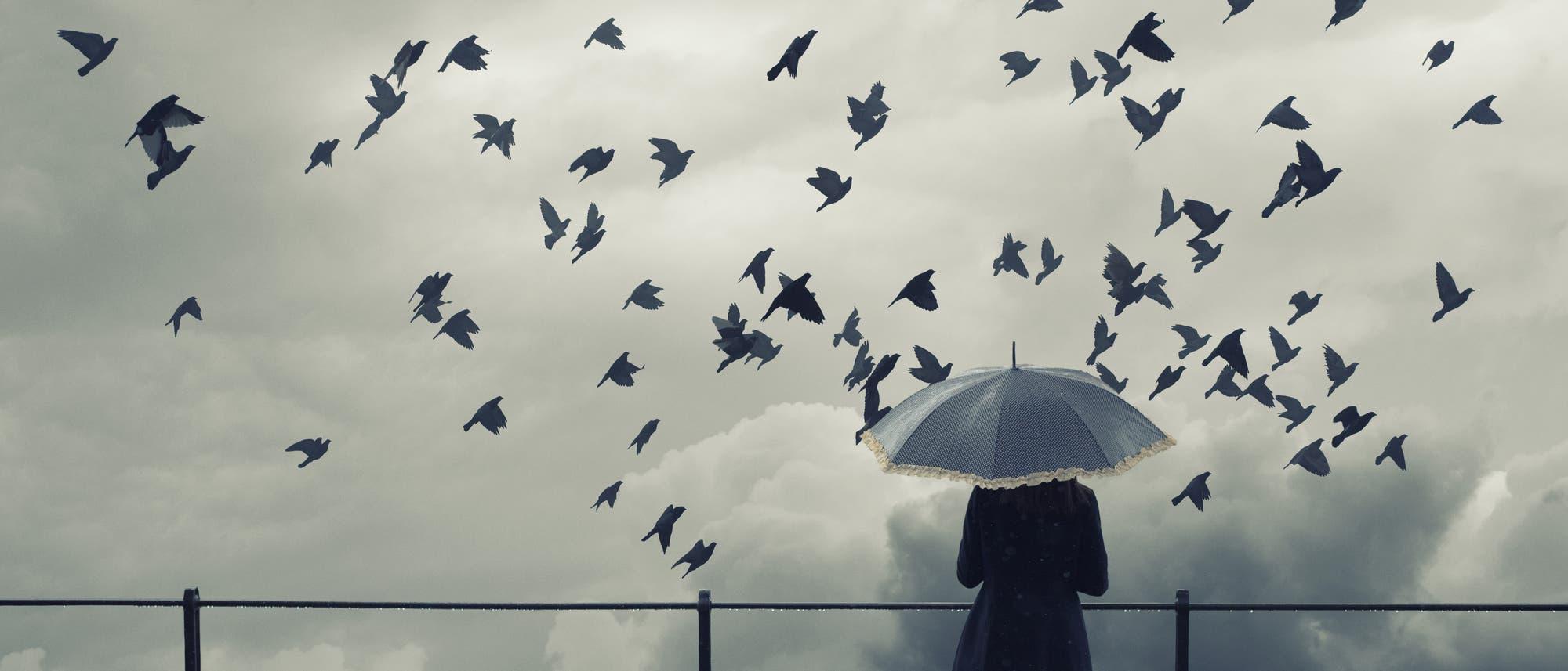 Einsame Frau beobachtet Vögel