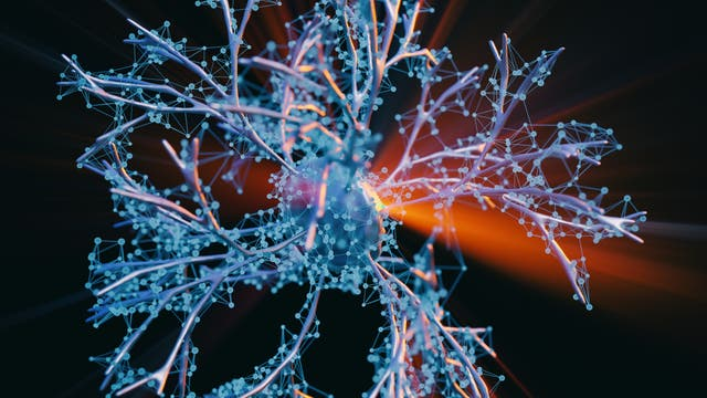 Ein Lichtstrahl trifft eine fein verzweigte Nervenzelle