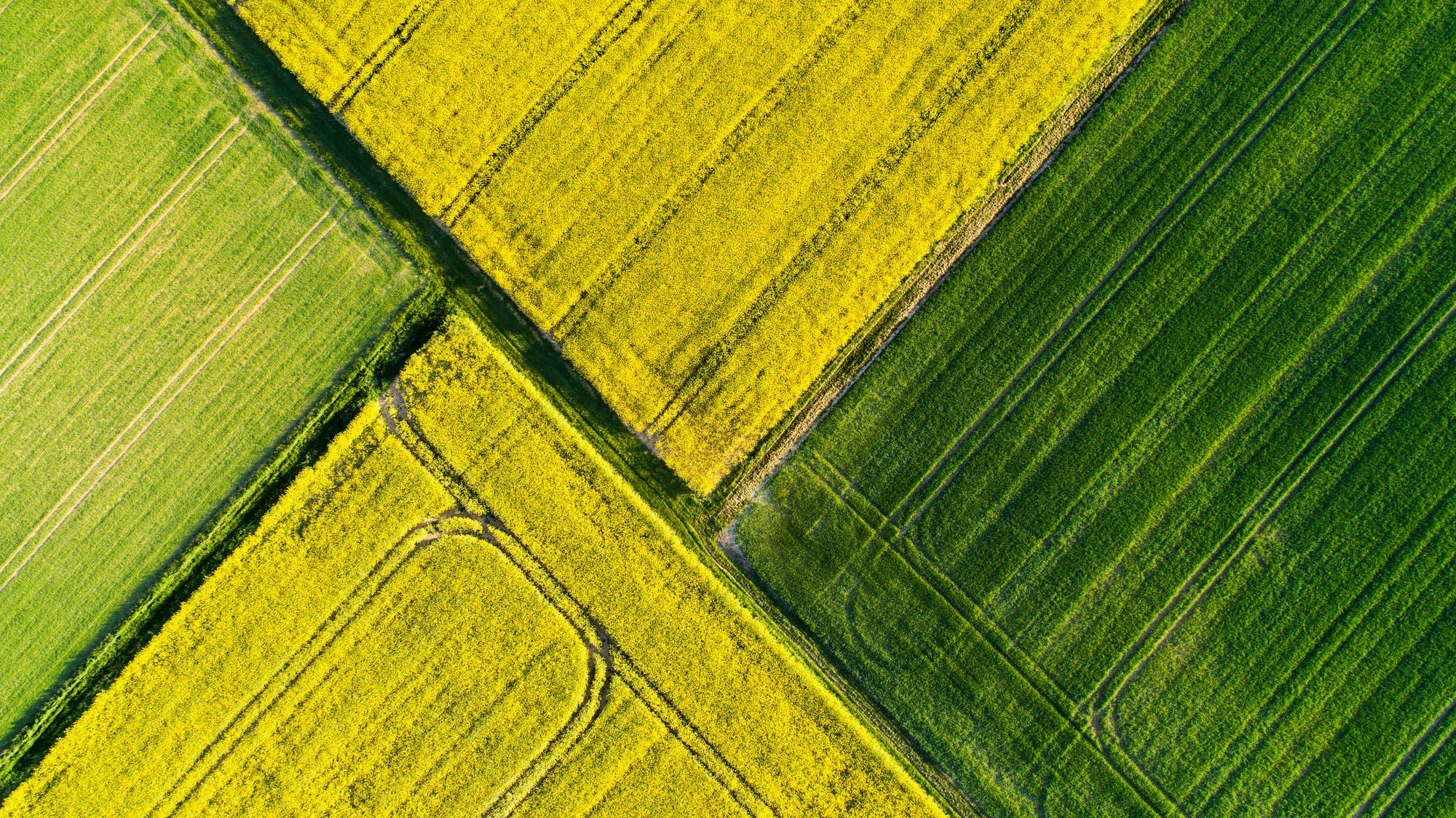 Lebensraum statt Agrarwüste?