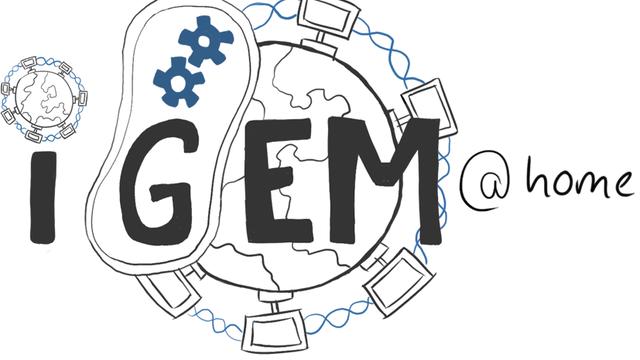 Logo von iGEM@home