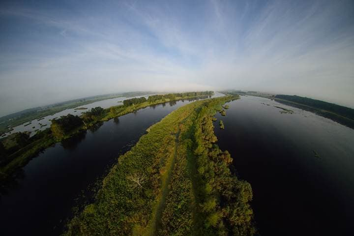 Oderdelta