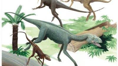 Dinosaurier (hinten) und ihre Vorfahren (vorne)