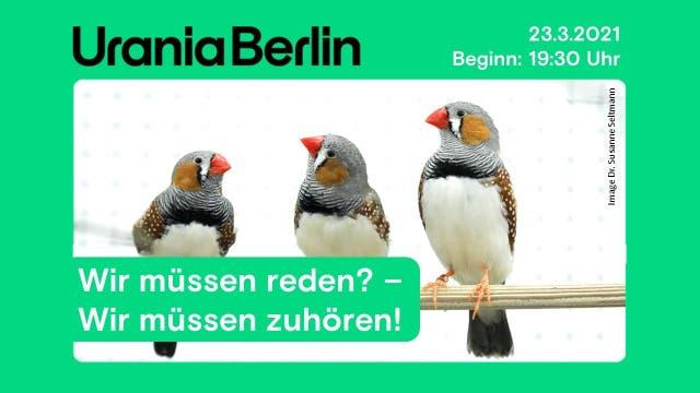 Was wir von Singvögeln lernen können
