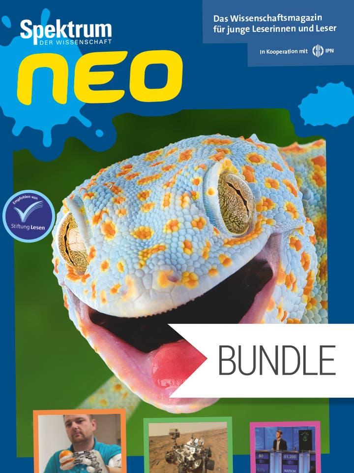 Digitalpaket: Spektrum neo