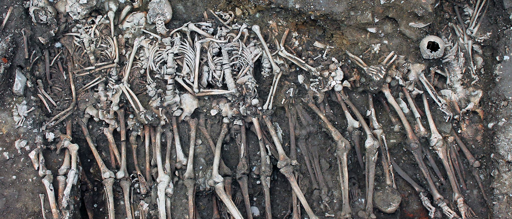 Ein gut drei Meter langer Graben enthielt mindestens 28 Skelette