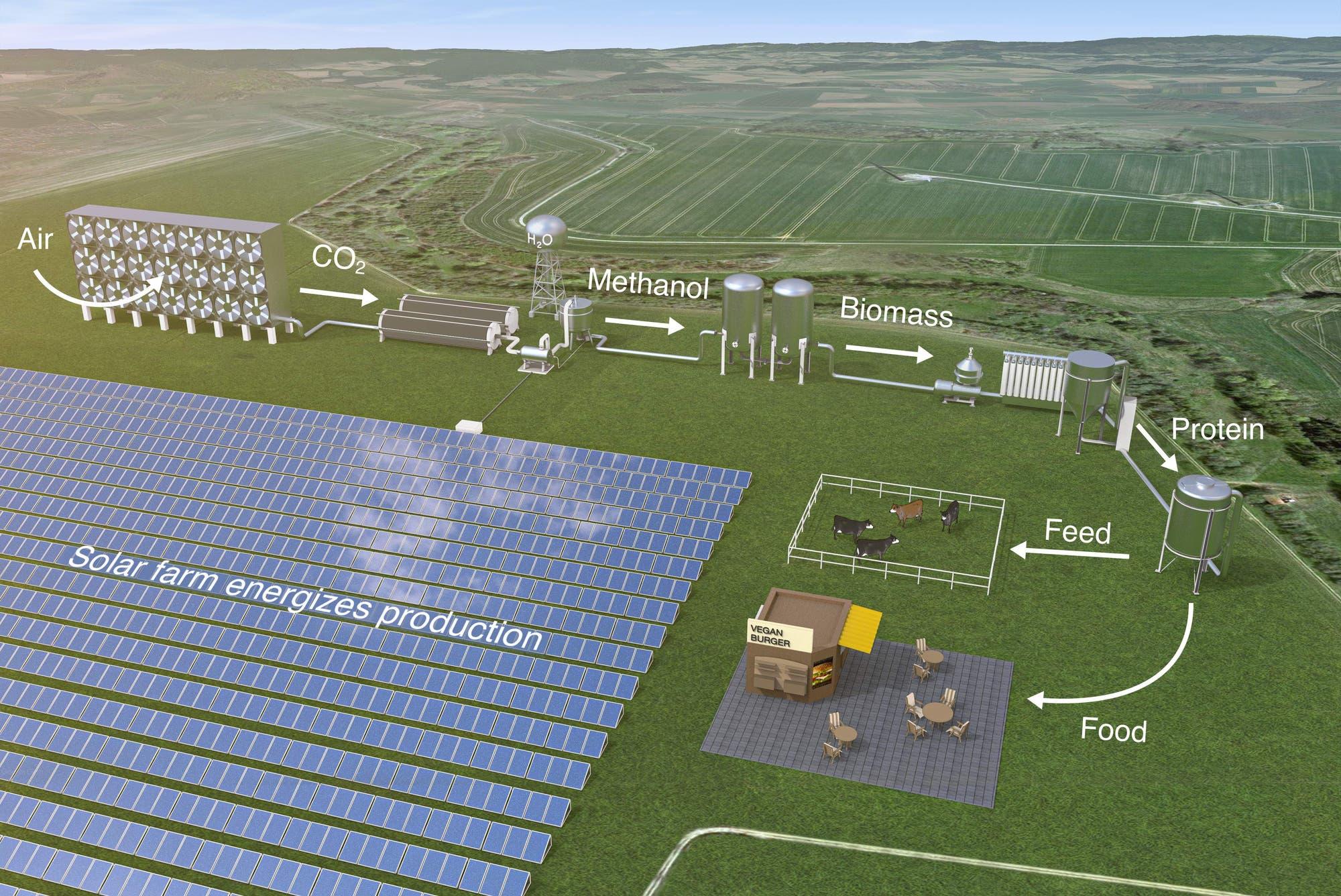 Solarbetriebene Bakterienfarm