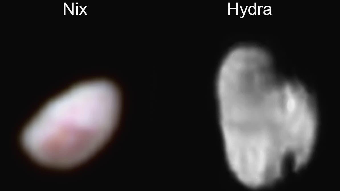 Nix und Hydra im Porträt