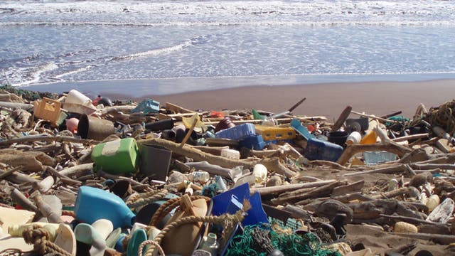 Kunststoffmüll in Strandgut