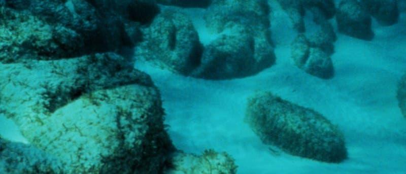 Stromatolithe im Meer