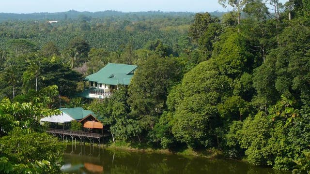 Rainforest Discovery Center in Sepilok