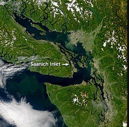 Saanich Inlet in Kanada