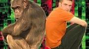 Mensch und Schimpanse