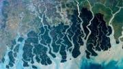 Flussdelta, Sundarbans, Bangladesch
