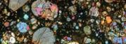 Mikrofotografie des Dünnschnitts eines Meteoriten