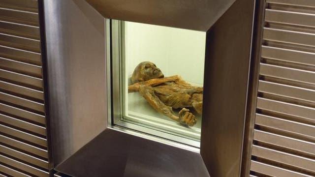 Ötzi im Kühlschrank