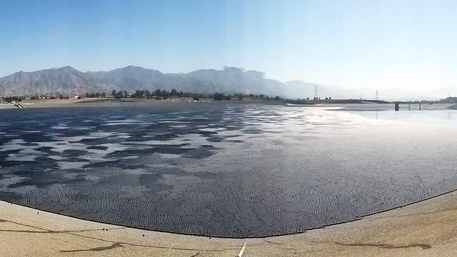 Shade Balls in Kalifornien