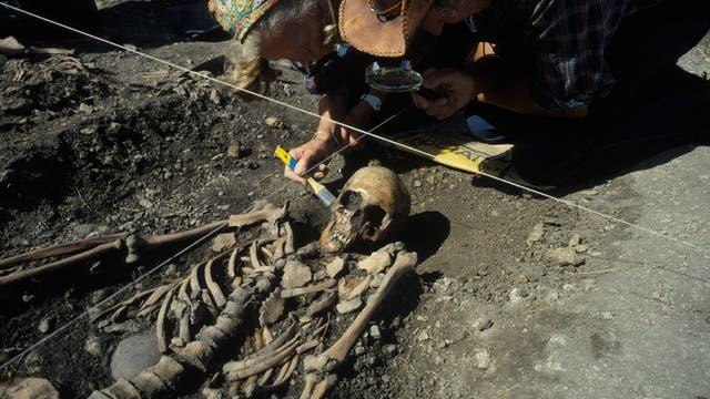 Ausgrabung auf Gotland