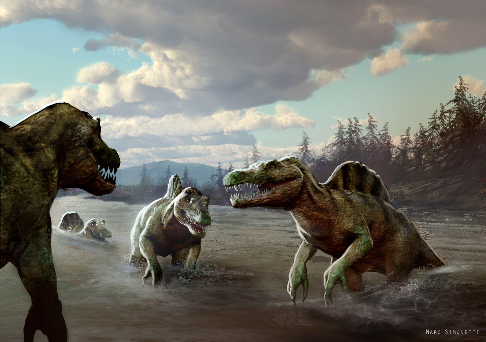 Spinosaurier in ihrem Element