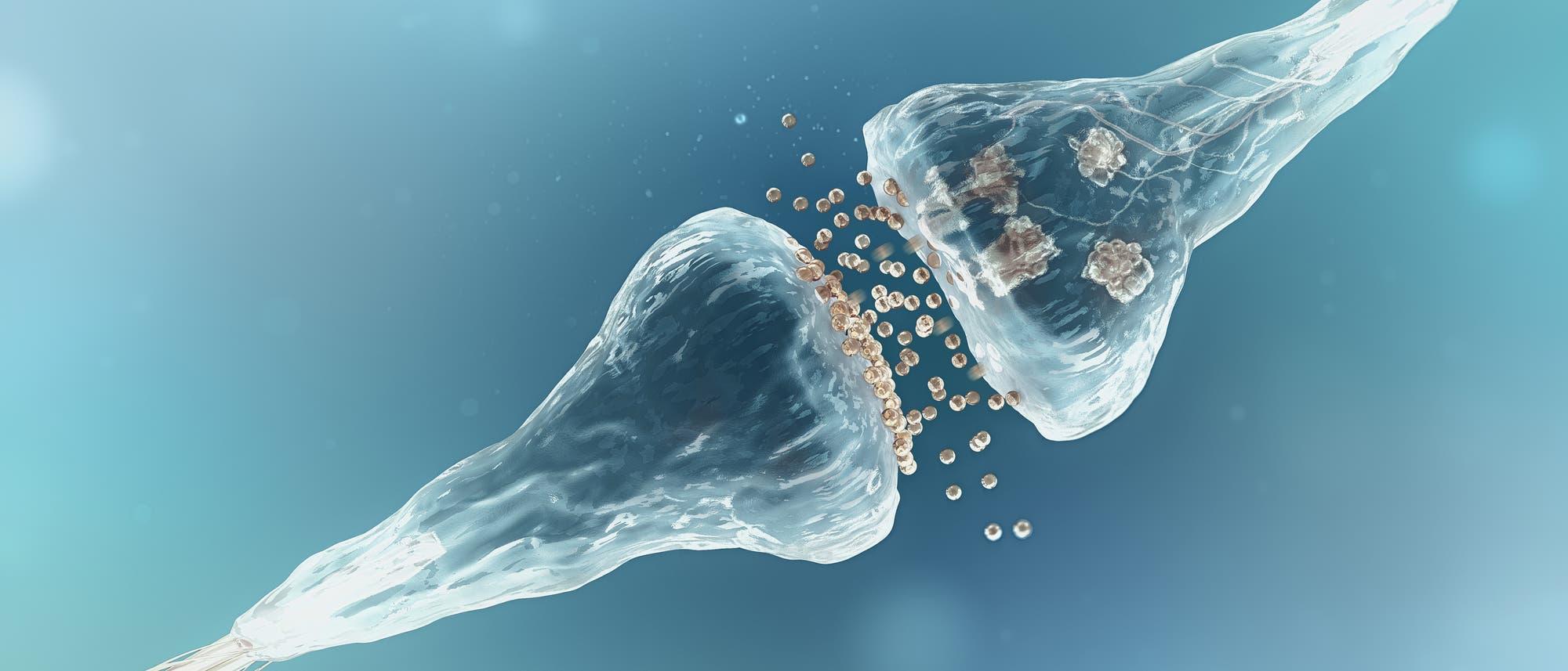 Grafische Darstellung eines synaptishen Spalts mit wandernden Neurotransmittern